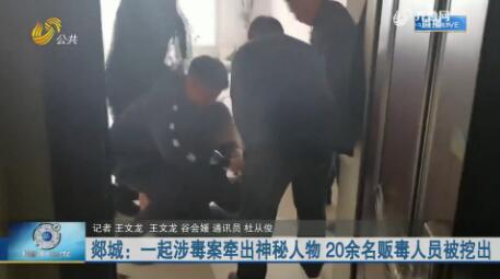 郯城:一起涉毒案牵出神秘人物 20余名贩毒人员被挖出