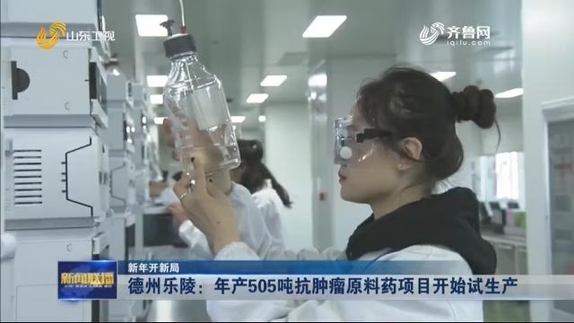 【新年开新局】德州乐陵:年产505吨抗肿瘤原料药项目开始试生产