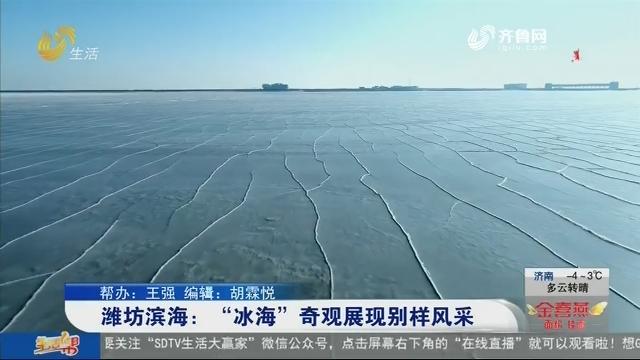 """潍坊滨海:""""冰海""""奇观展现别样风采"""