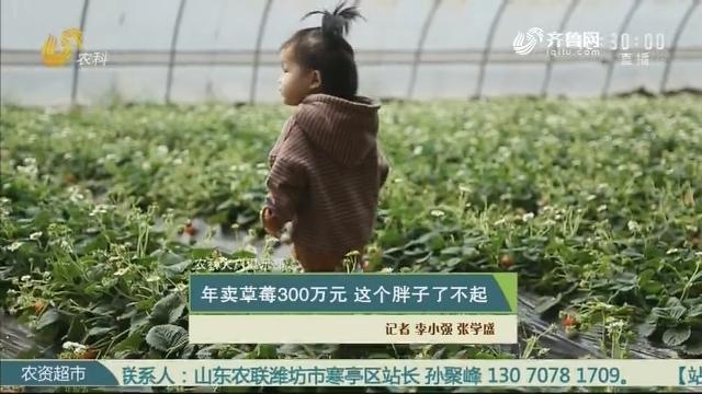 【农科大户俱乐部】年卖草莓300万元 这个胖子了不起