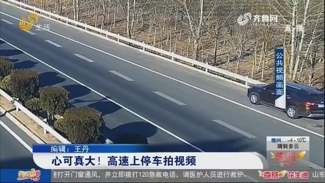 心可真大!高速上停车拍视频