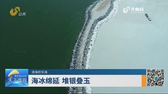 【滨海欢乐海】海冰绵延 堆银叠玉