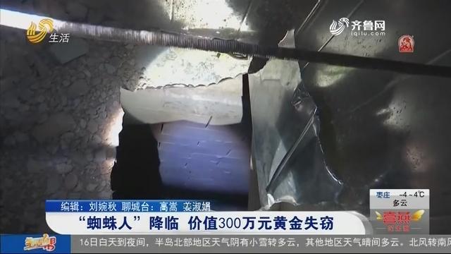 """""""蜘蛛人""""降临 价值300万元黄金失窃"""