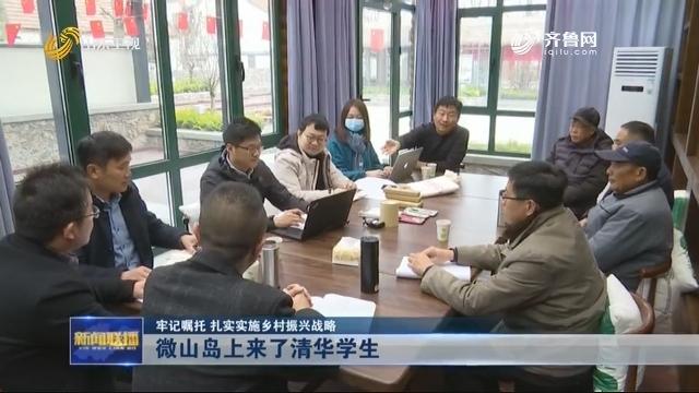 【牢记嘱托 扎实实施乡村振兴战略】微山岛上来了清华学生
