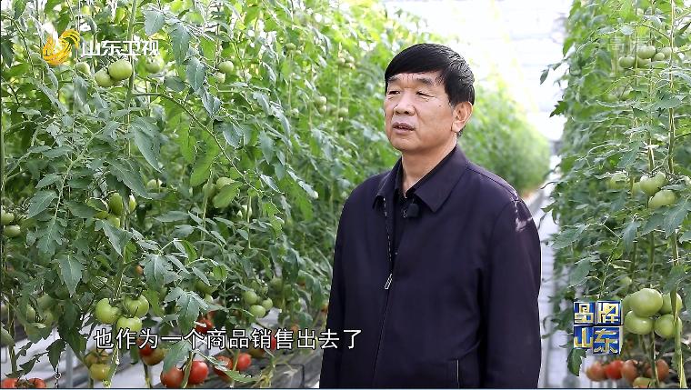 """【品牌新势力】潍坊国家农综区:""""试验田""""里的新模式"""