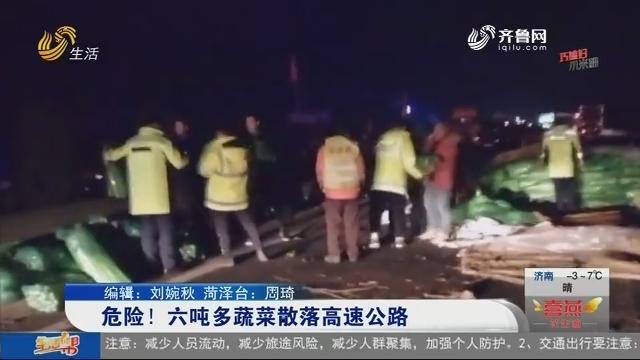 危险!六吨多蔬菜散落高速公路