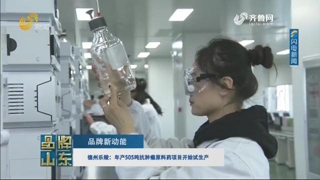【品牌新动能】德州乐陵:年产505吨抗肿瘤原料药项目开始试生产