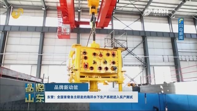 【品牌新动能】东营:全国首套自主研发的海洋水下生产系统进入实产测试