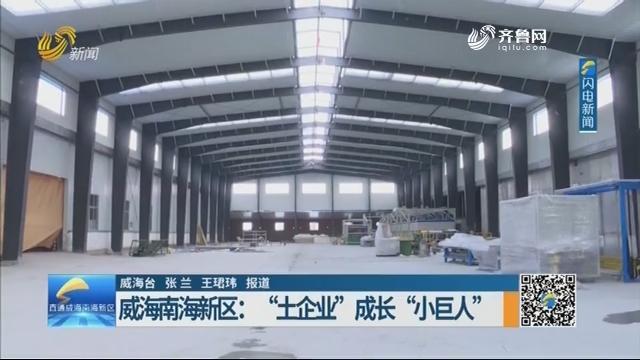 """威海南海新区:""""土企业""""成长""""小巨人"""""""