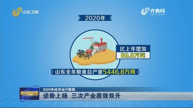 【2020年经济运行数据】逆势上扬 三次产业质效双升