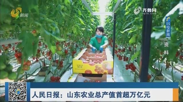 人民日报:山东农业总产值首超万亿元