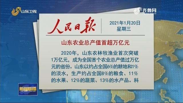 人民日报发表文章:《山东农业总产值首超万亿元》