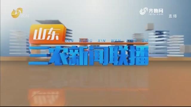 2021年01月21日山东三农新闻联播完整版