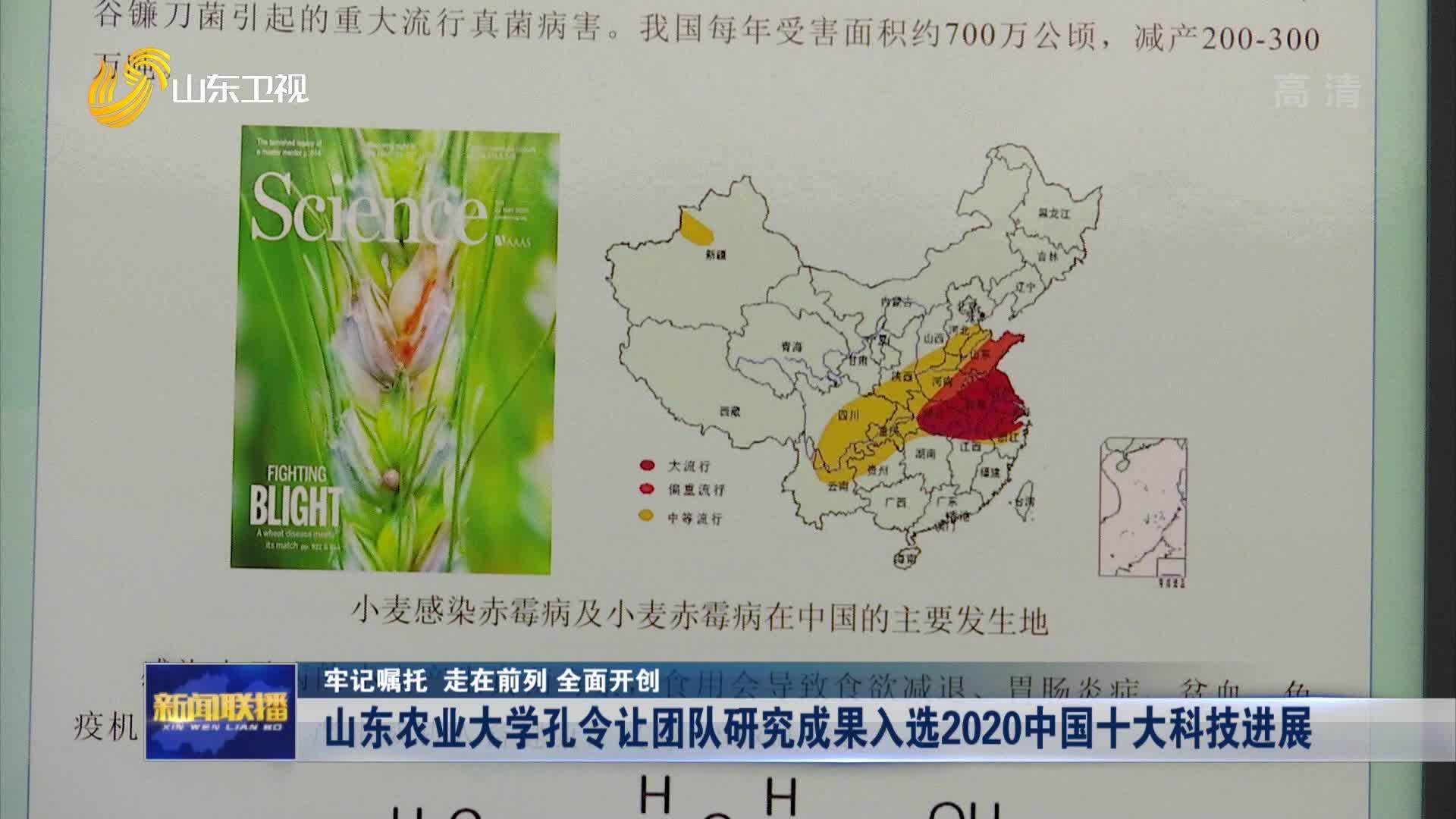【牢记嘱托 走在前列 全面开创】山东农业大学孔令让团队研究成果入选2020中国十大科技进展