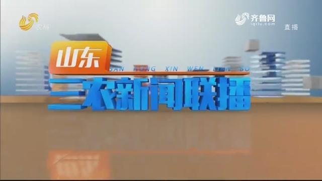 2021年01月20日山东三农新闻联播完整版
