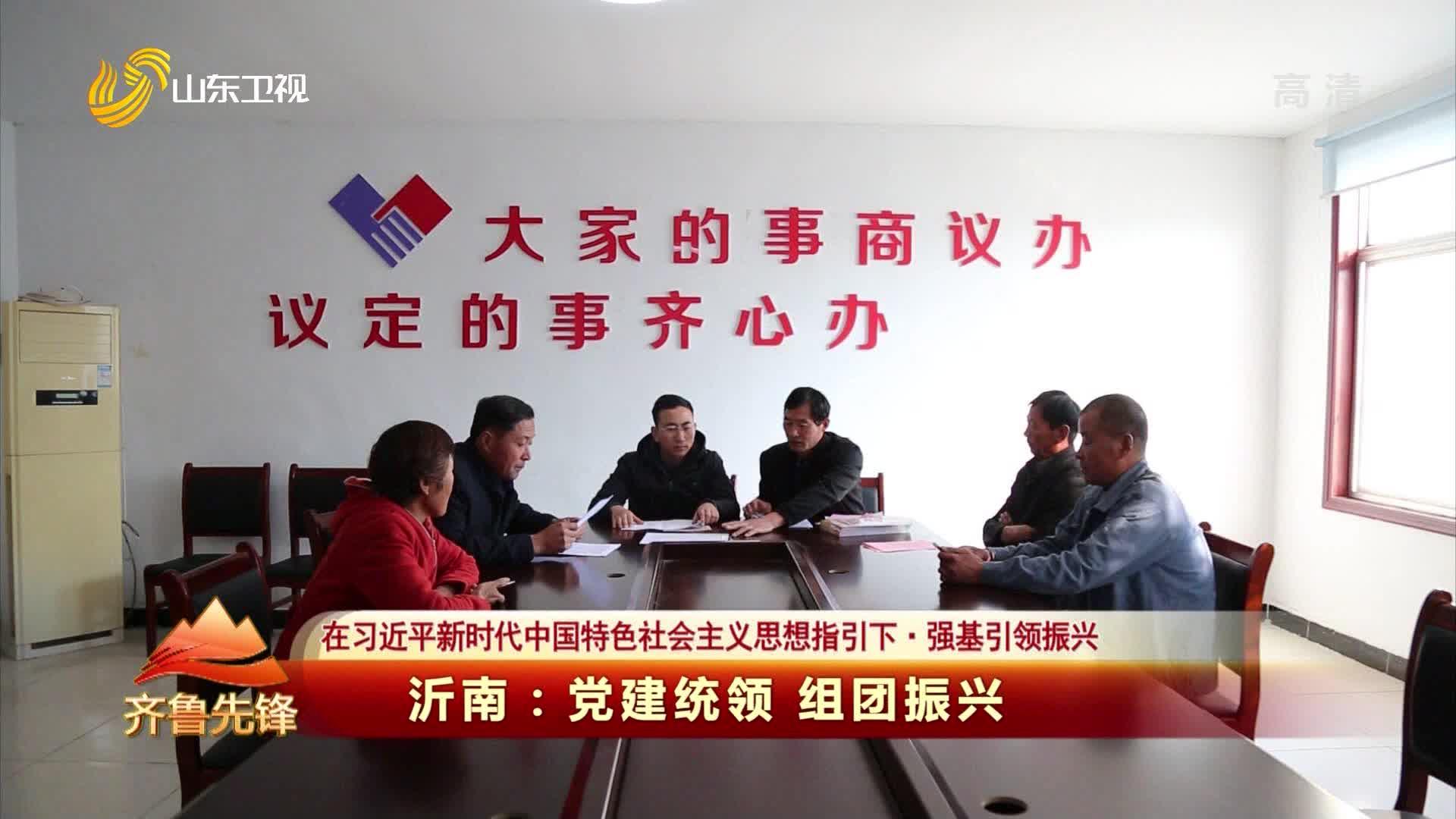 20210123《齐鲁先锋》:沂南——党建统领 组团振兴