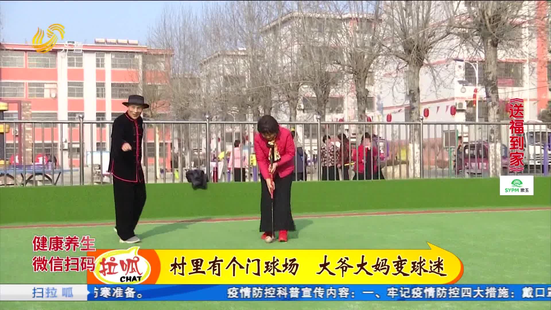 送福到家:74岁老教头 玩转门球