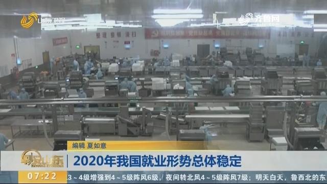 2020年我国就业形势总体不变