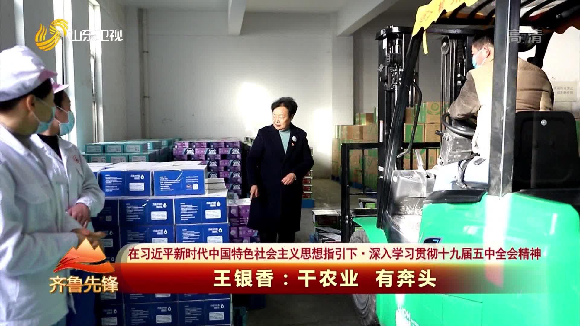 20210130《齐鲁先锋》:王银香——干农业 有奔头