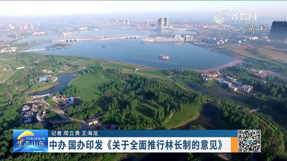 中办 国办印发《关于全面推行林长制的意见》