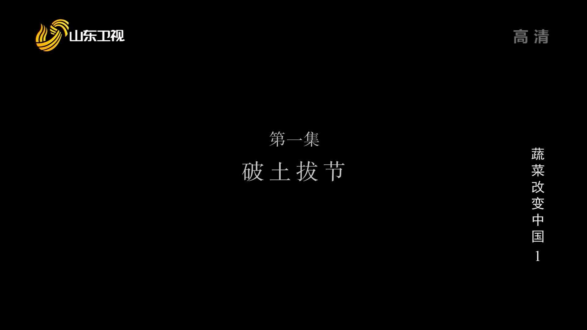 《蔬菜改变中国》第一集《破土拔节》