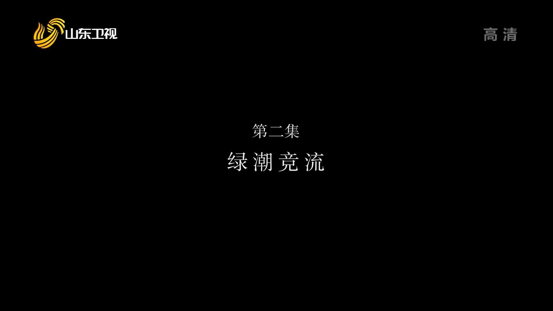 《蔬菜改变中国》第二集《绿潮竞流》