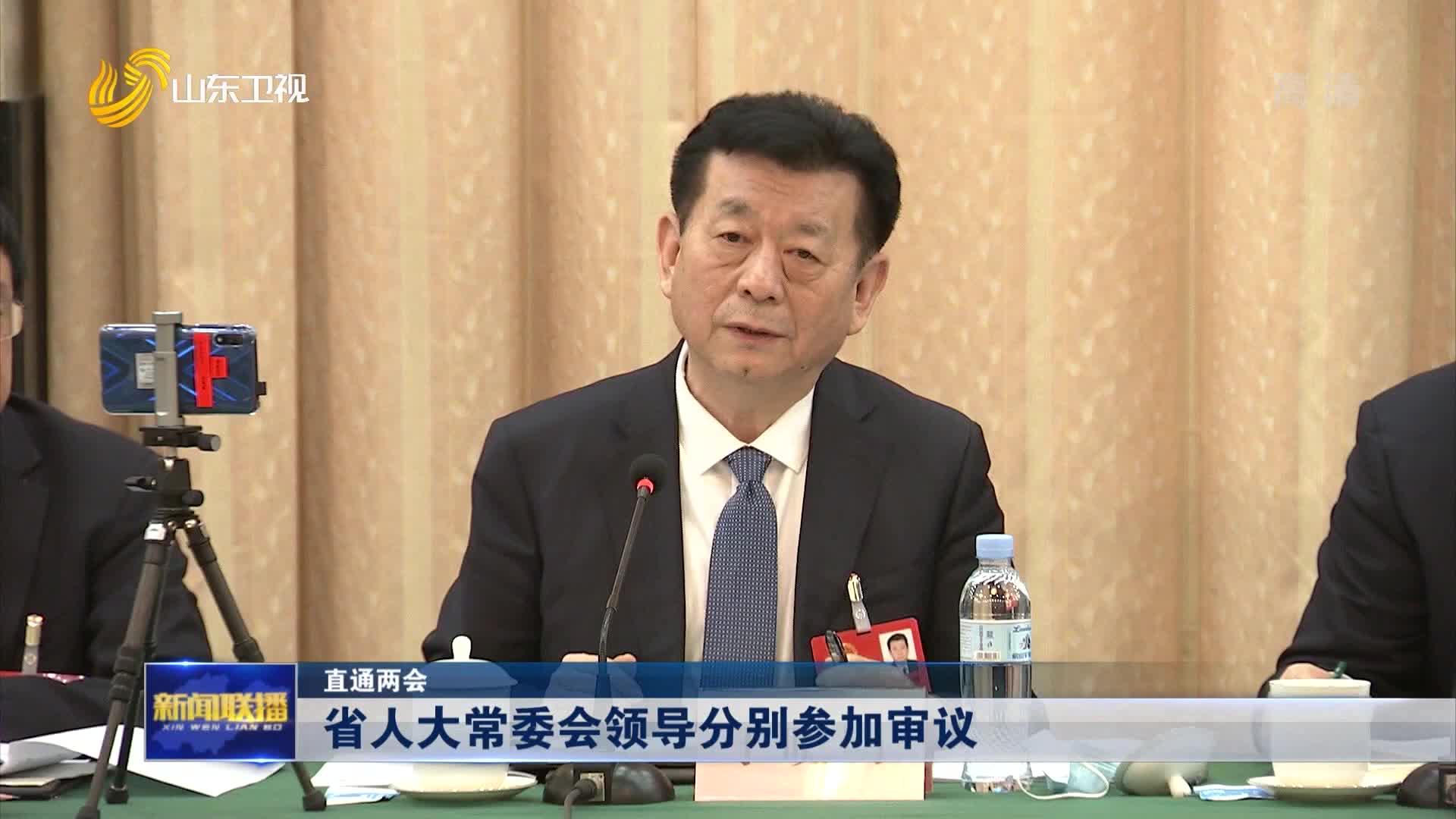 【直通两会】省人大常委会领导分别参加审议