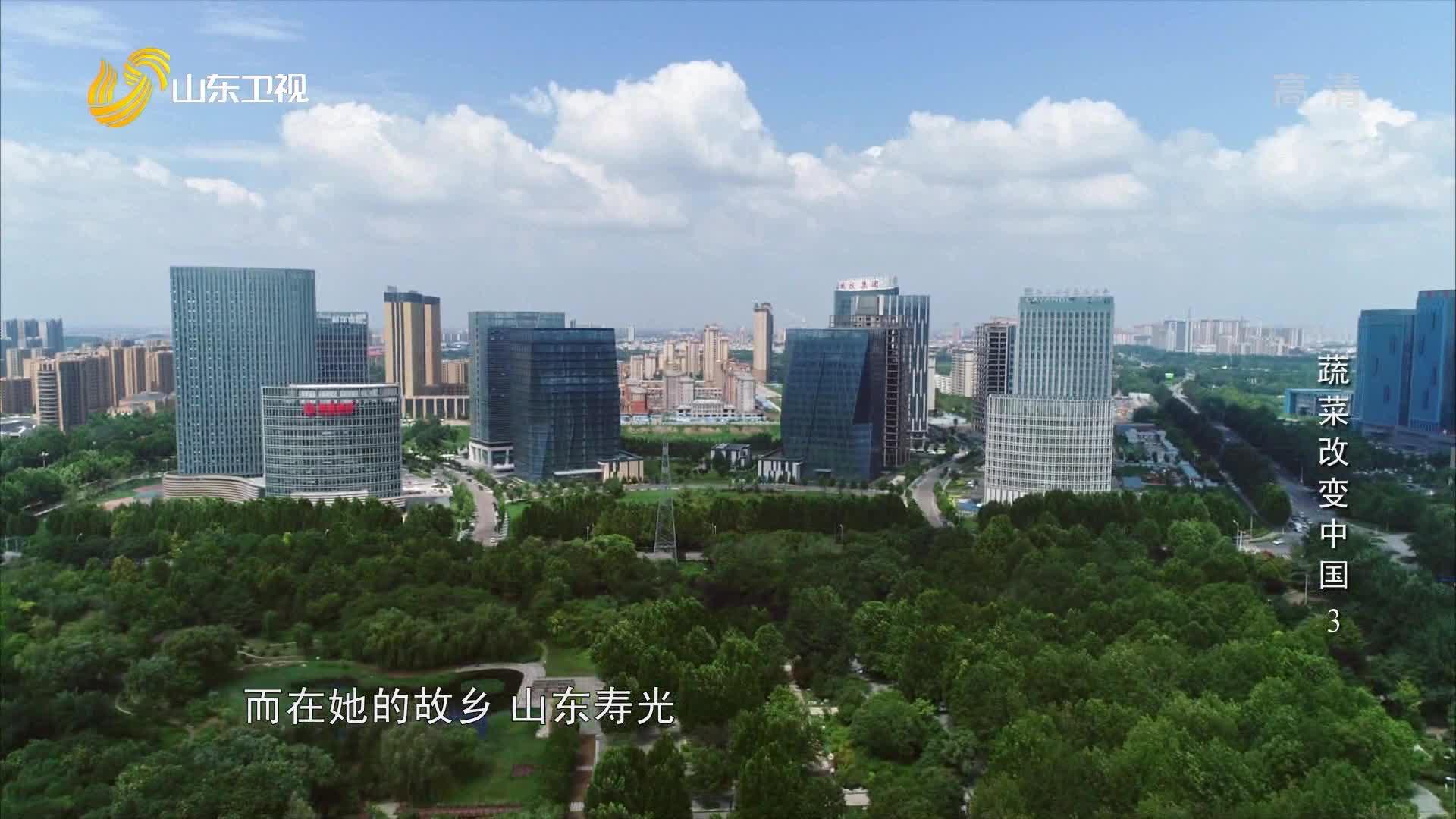 《蔬菜改变中国》第三集《多彩硅谷》