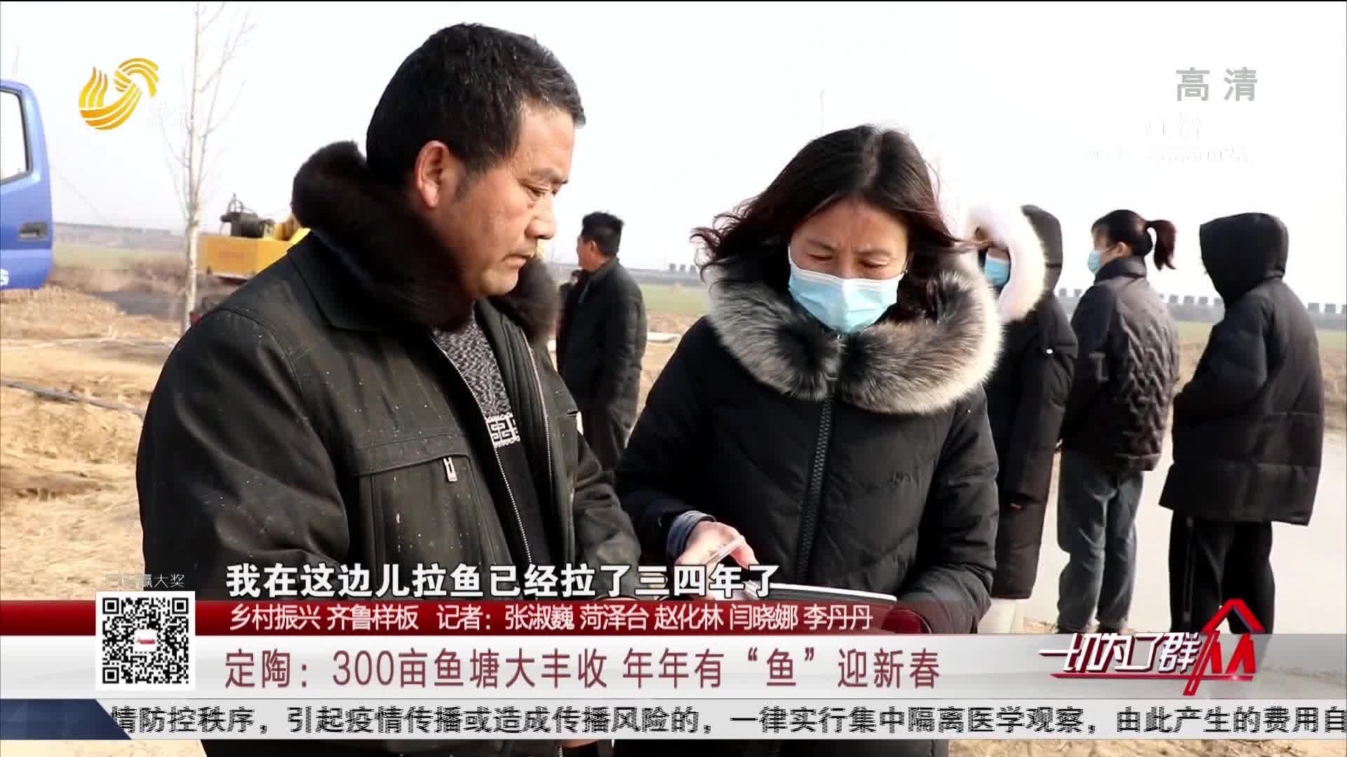 """【乡村振兴 齐鲁样板】定陶:300亩鱼塘大丰收 年年有""""鱼""""迎新春"""