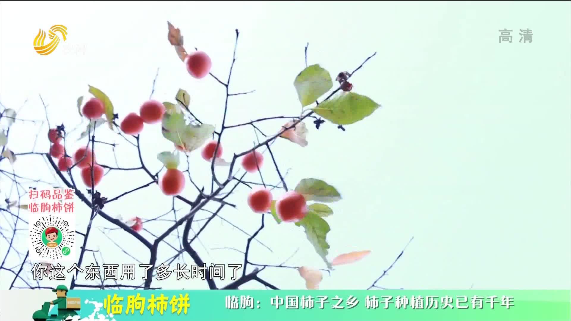 20210207《中国原产递》:临朐柿饼