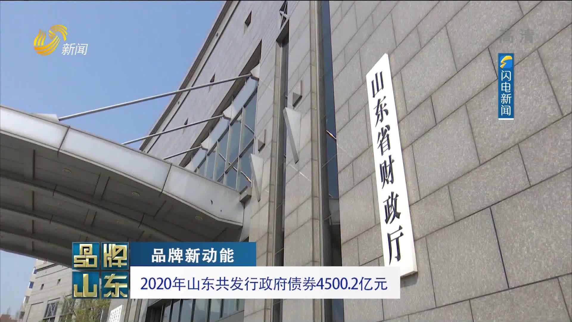 【品牌新动能】2020年山东共发行政府债券4500.2亿元