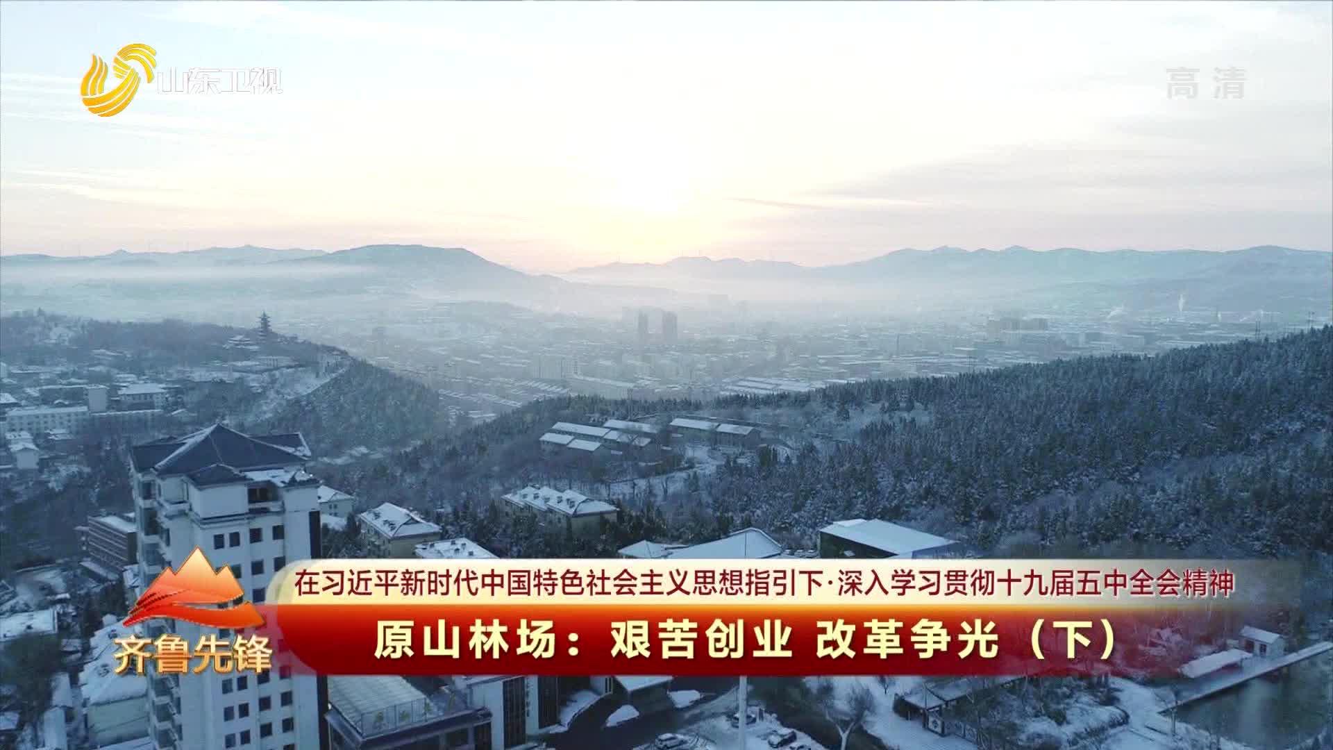 20210210《齐鲁先锋》:原山林场——艰苦创业 改革争光(下)