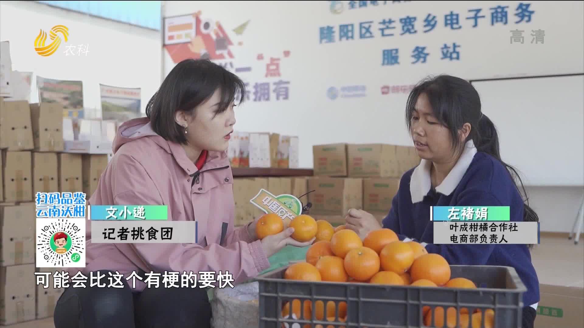 20210213《中国原产递》:保山沃柑