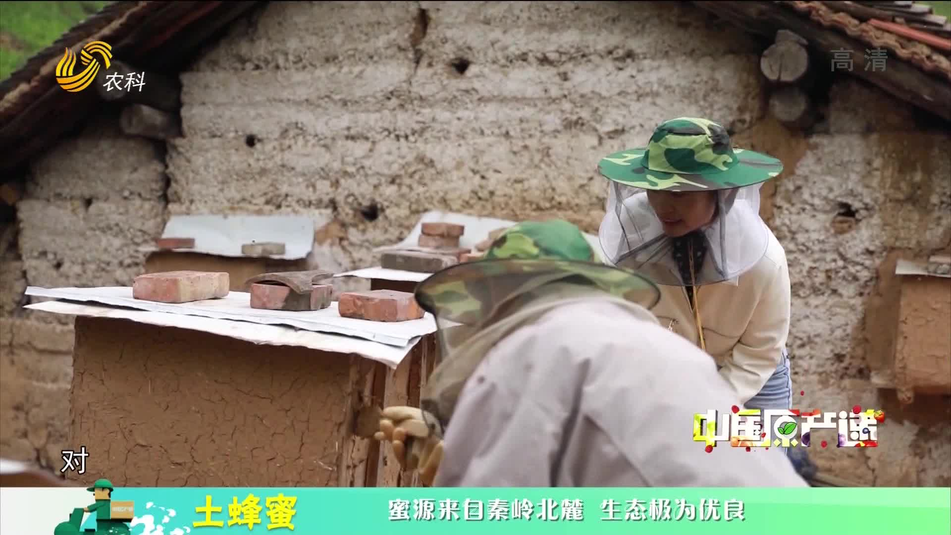 20210216《中国原产递》:土蜂蜜