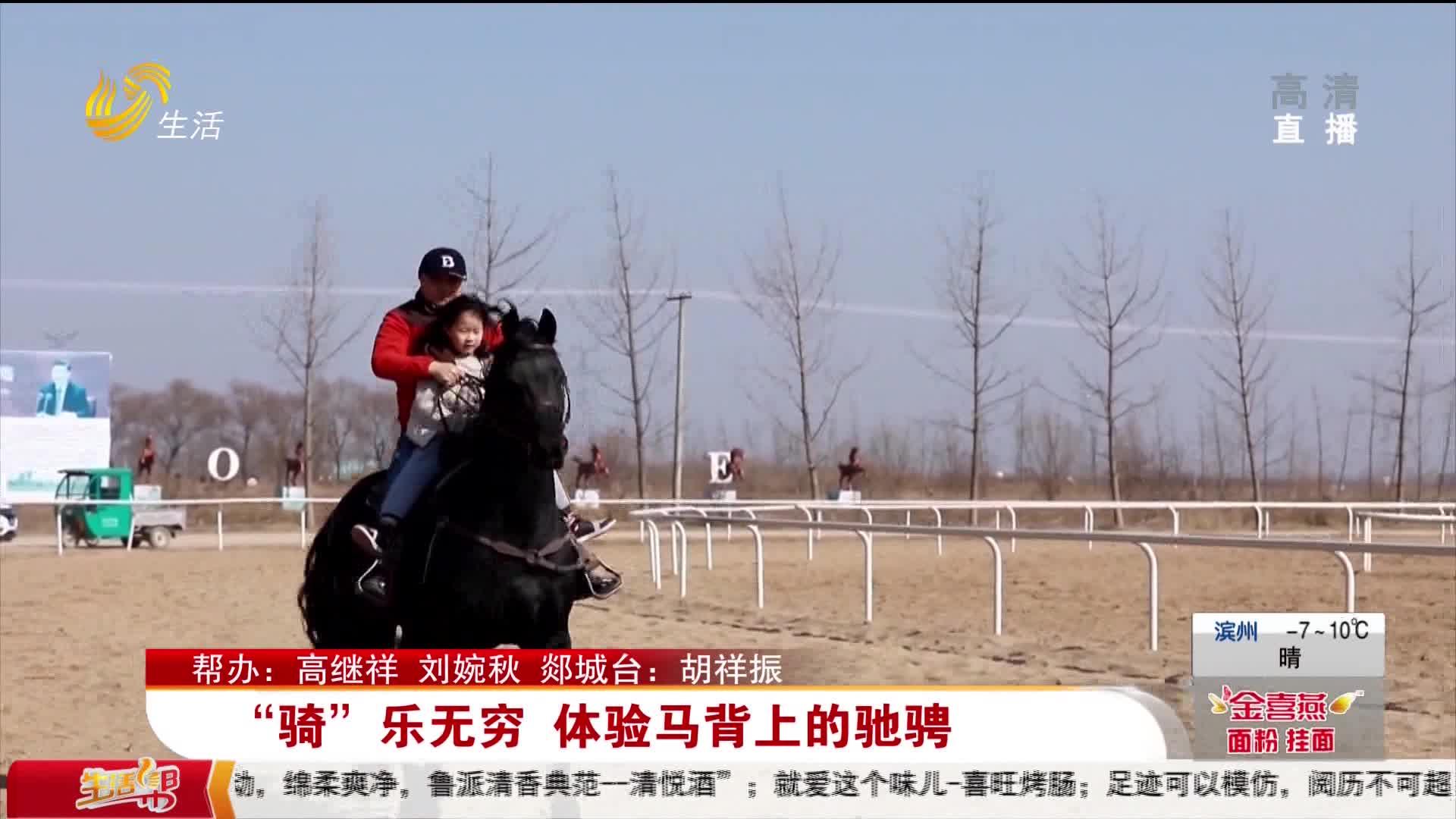 """""""骑""""乐无穷 体验马背上的驰骋"""
