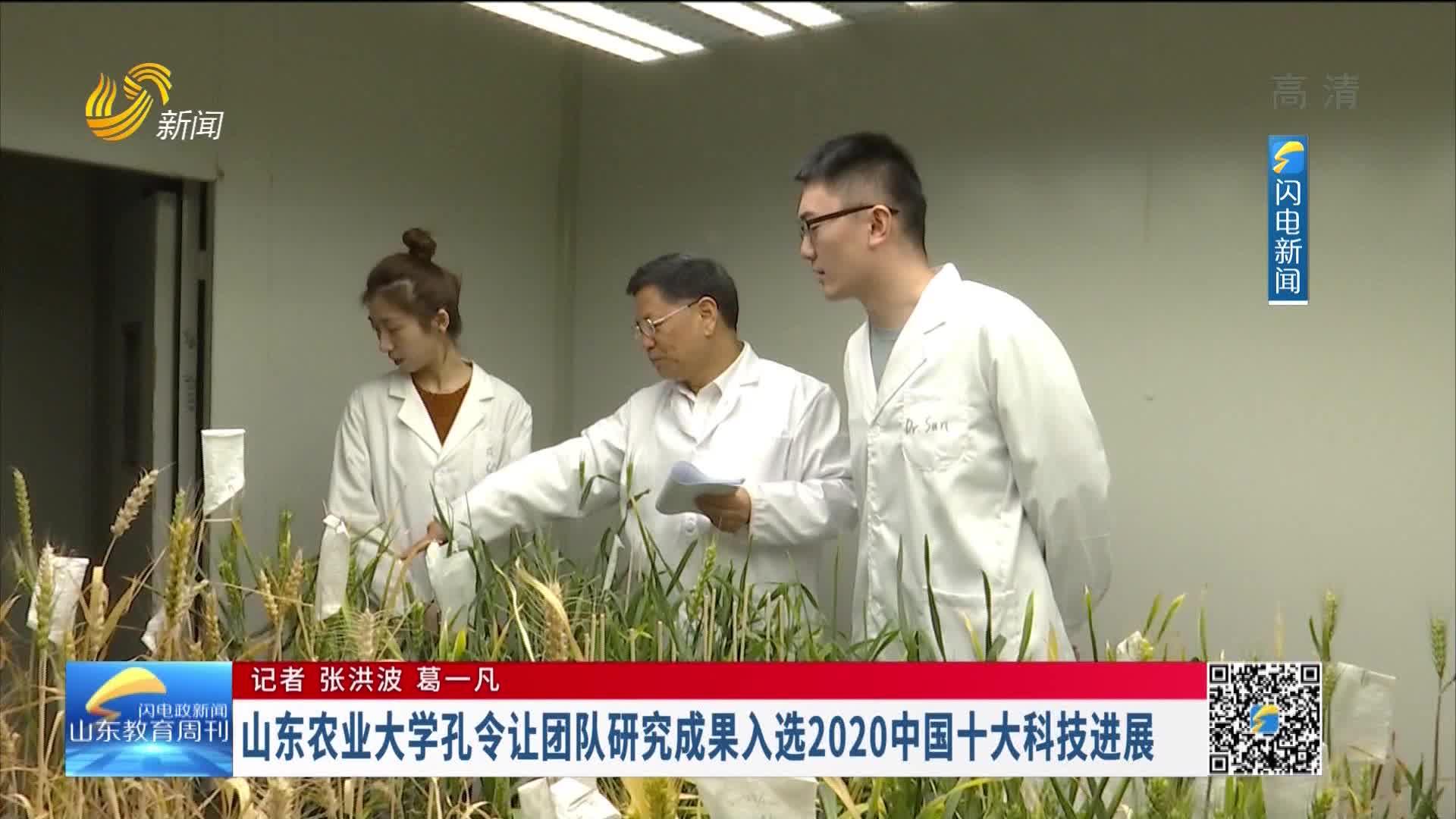 山东农业大学孔令让团队研究成果入选2020中国十大科技进展