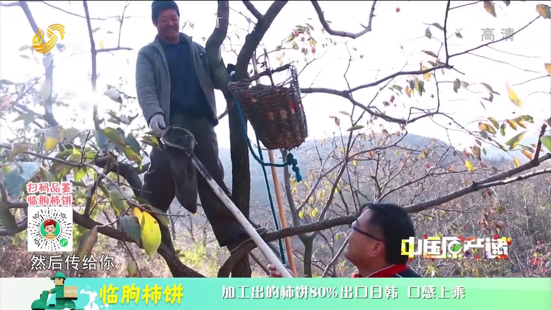 20210220《中国原产递》:临朐柿饼