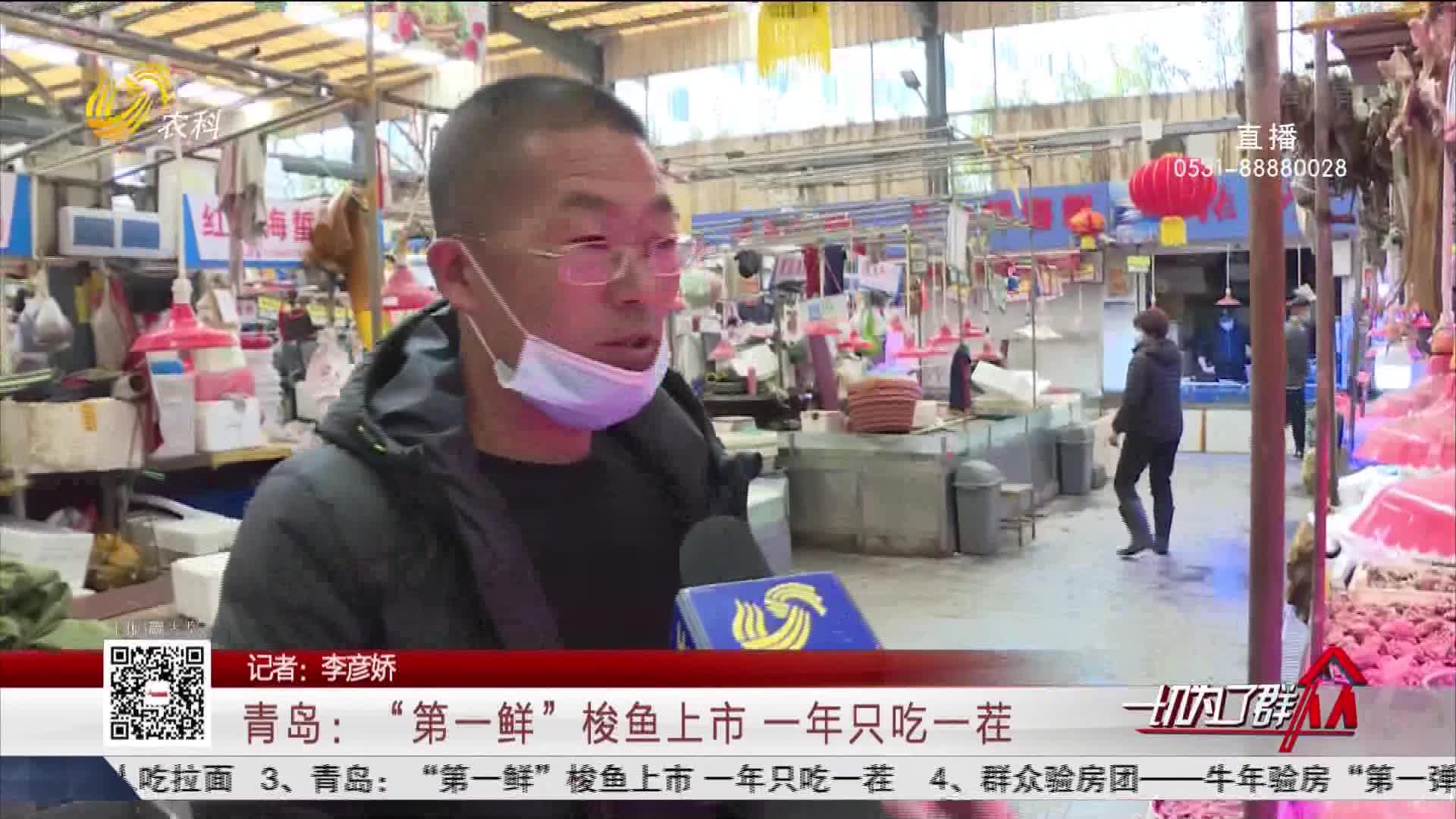 """青岛:""""第一鲜""""梭鱼上市 一年只吃一茬"""