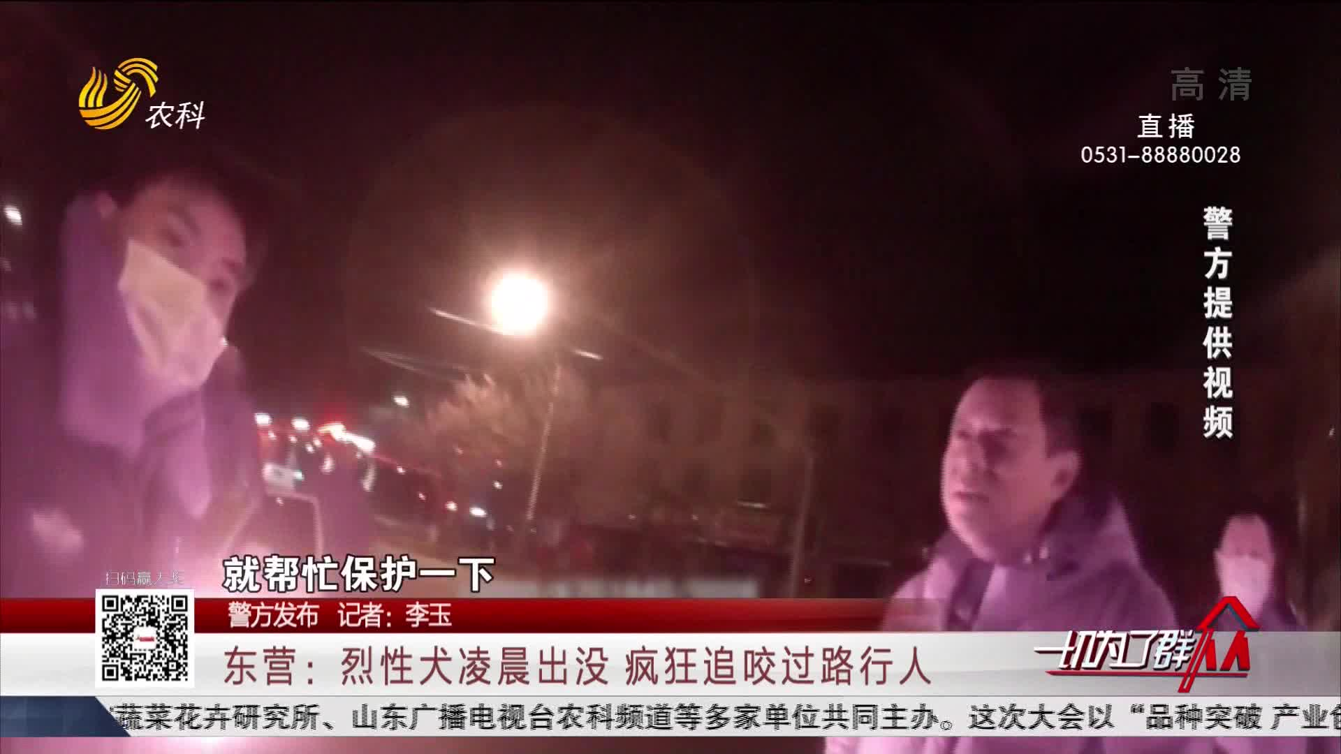 【警方发布】东营:烈性犬凌晨出没 疯狂追咬过路行人
