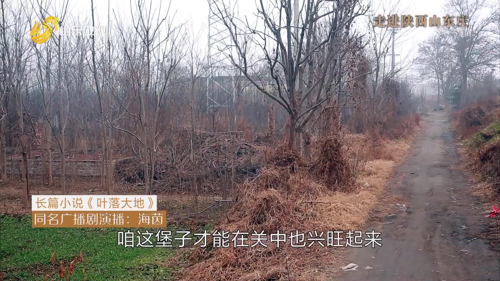 20210222《此时此刻》:走进陕西山东庄