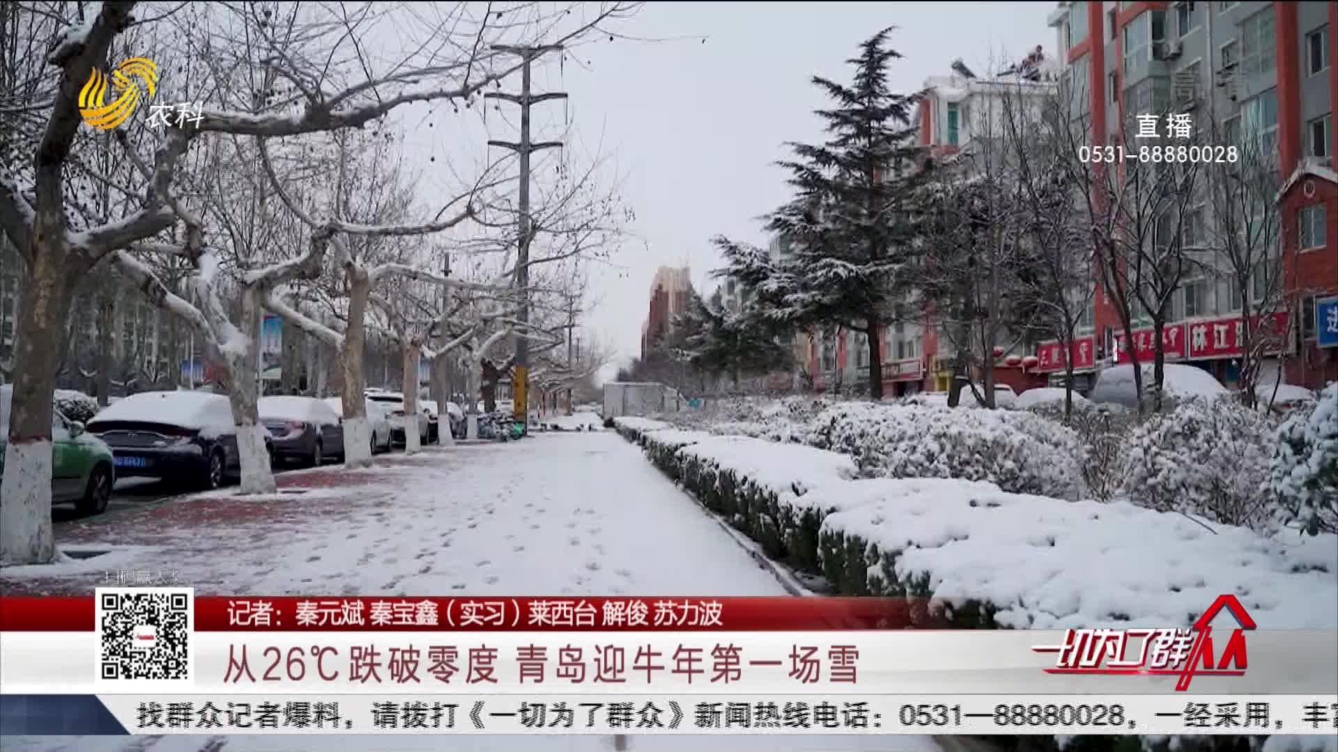 从26℃跌破零度 青岛迎牛年第一场雪