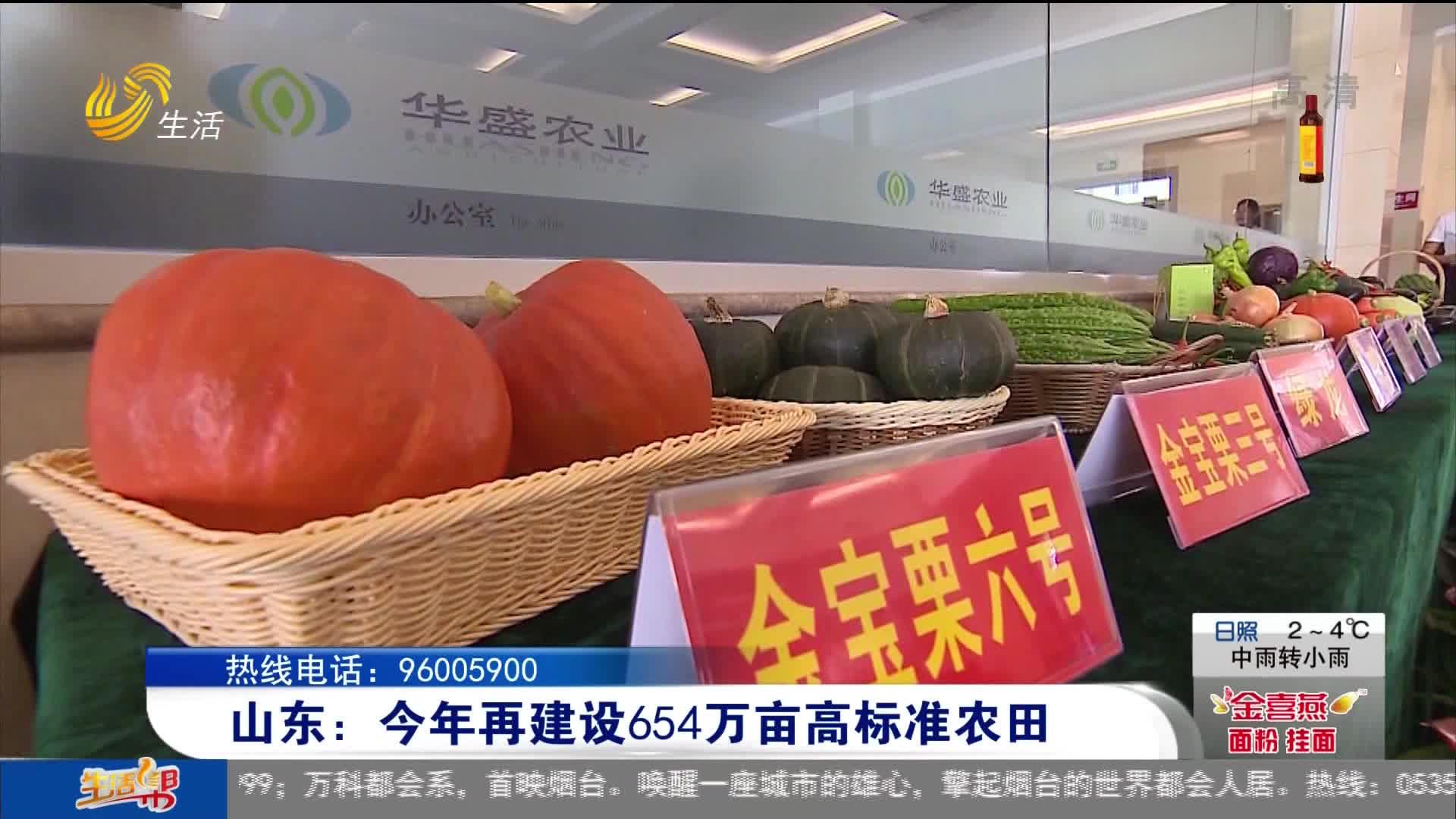 山东:今年再建设654万亩高标准农田