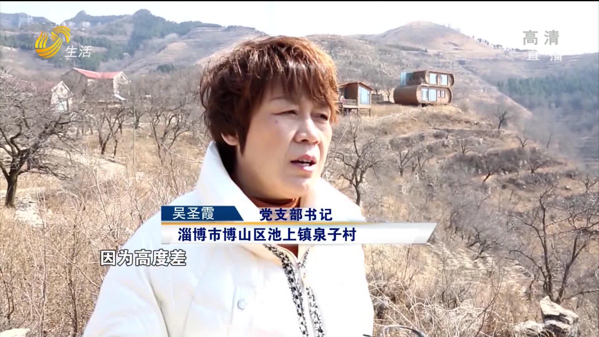"""淄博泉子村:女支书""""接力""""丈夫 带领村民脱贫致富"""