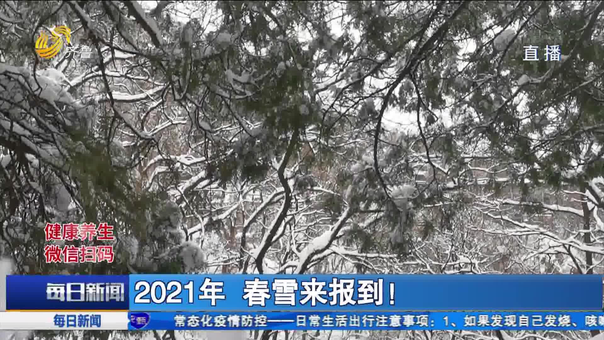 2021年 春雪来报到!