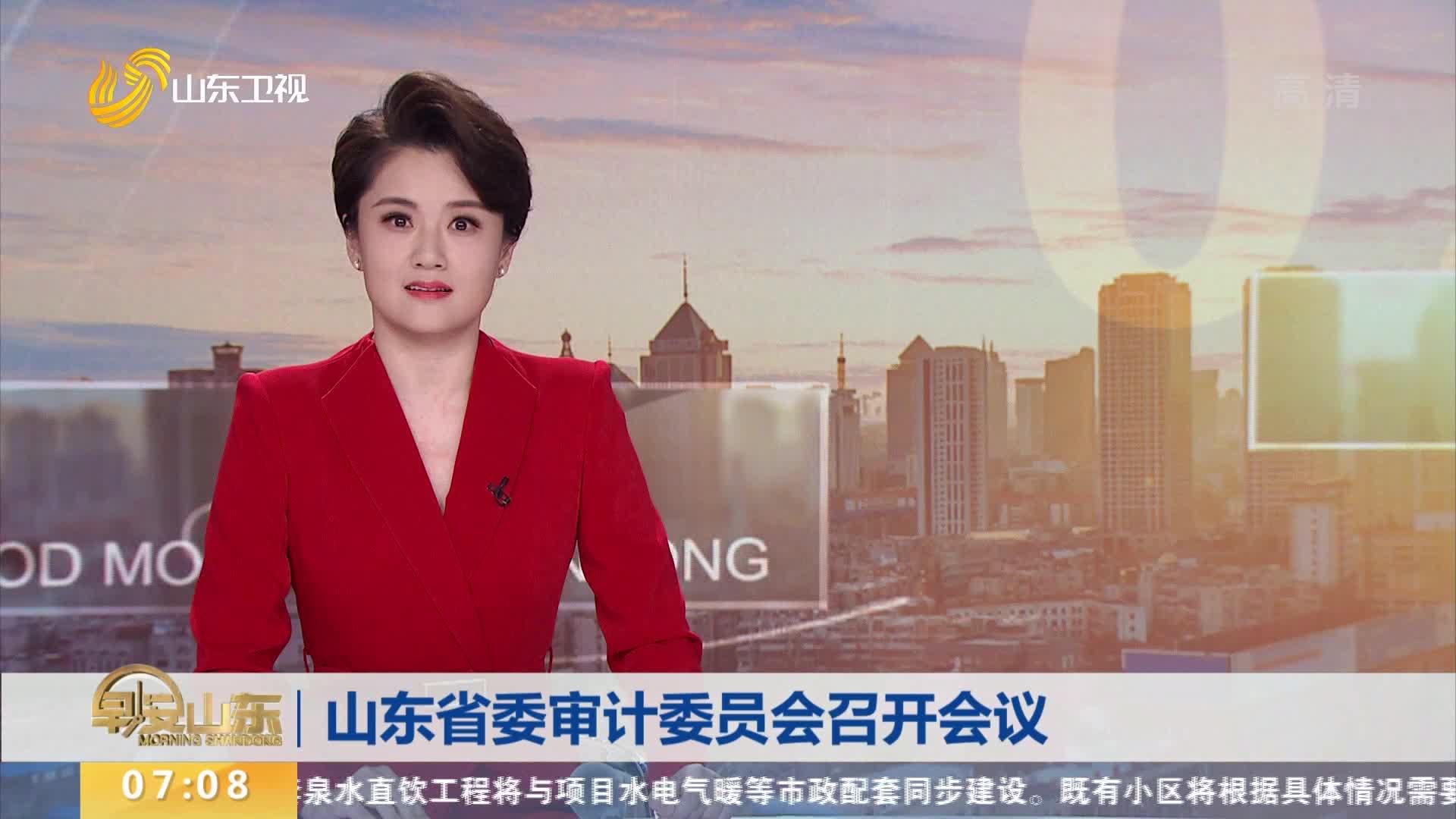 山东省委审计委员会召开会议