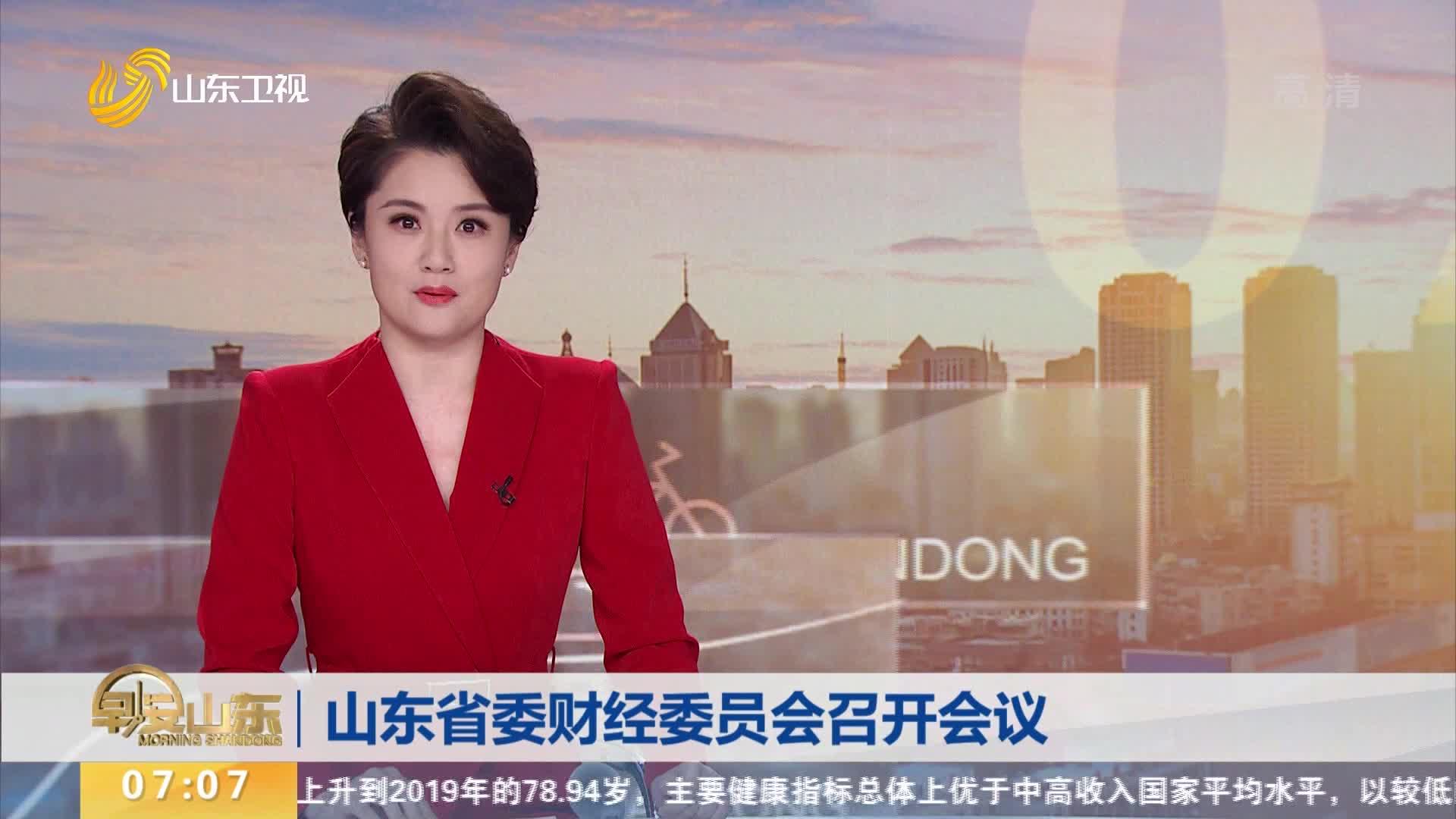 山东省委财经委员会召开会议