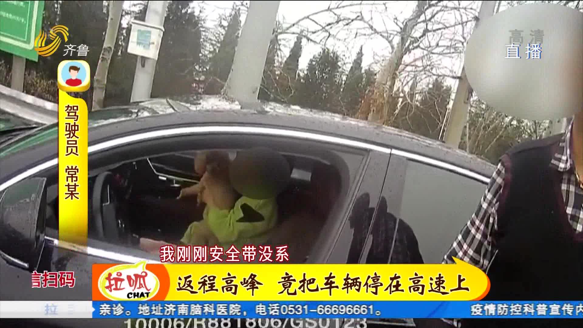 驾驶员抱宠物狗开车上高速