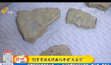 十岁男孩发现5亿年前三叶虫化石