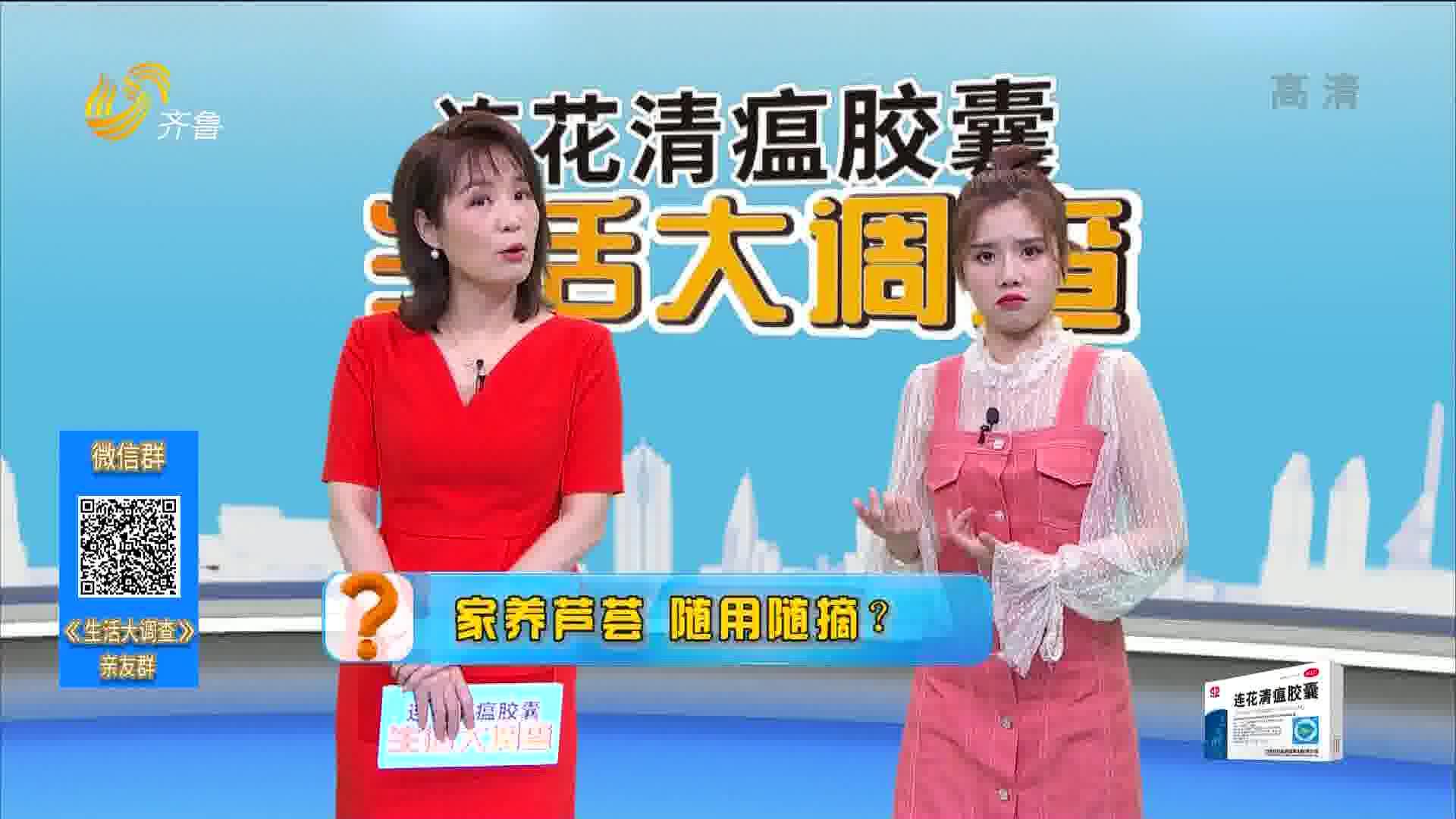 2021年02月27日《生活大调查》:家有芦荟 随用随摘?