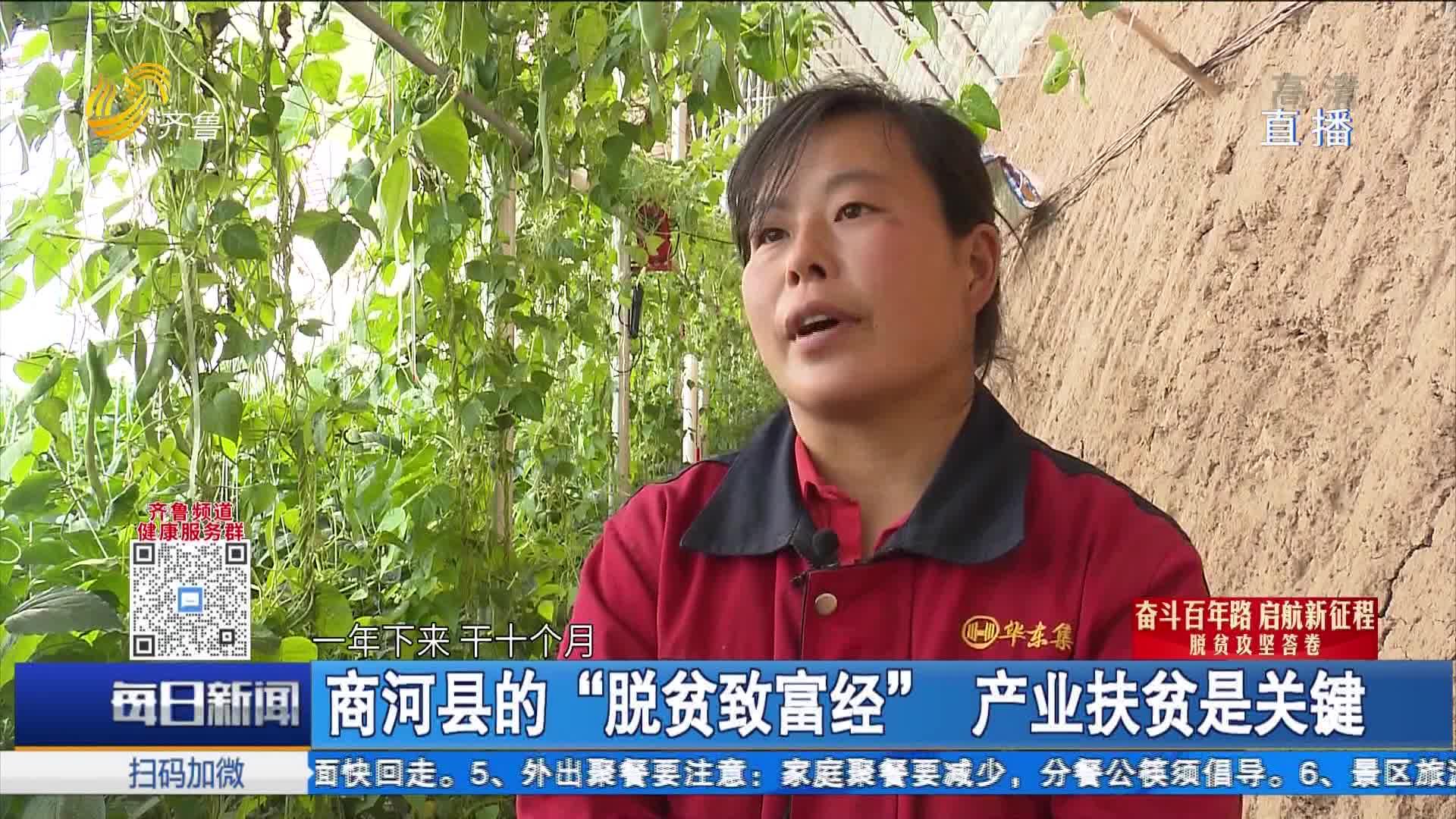 """商河县的""""脱贫致富经"""" 产业扶贫是关键"""